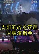 2010太阳的故乡花莲闪耀演唱会