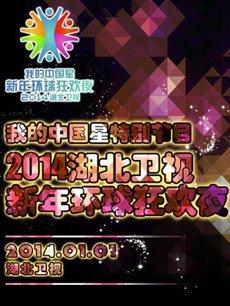 2014湖北卫视跨年(新年环球狂欢夜)