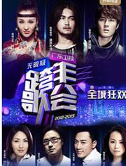 广东卫视跨年晚会2013