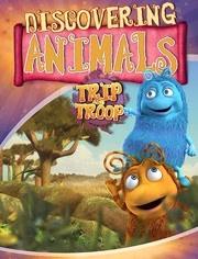 大T小T的动物世界